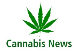 Noticias y Actualidad del Cannabis