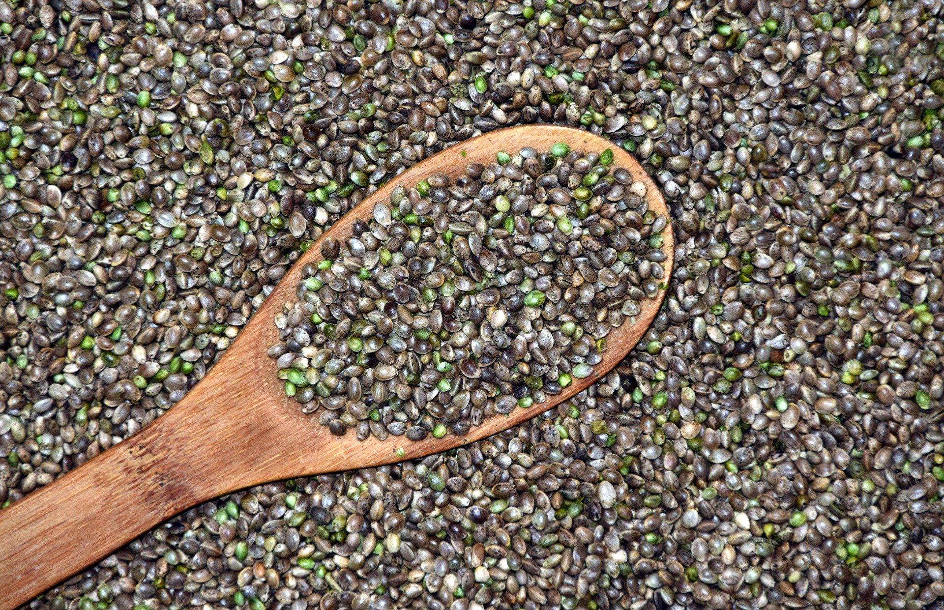 Productos alimenticios derivados del cáñamo
