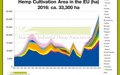 Industrial hemp in Spain: history and news